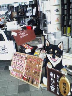 浜大津朝市に出店してきました!