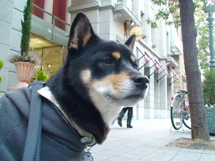 Kobe1_2